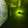 Галерея искусств подо льдом Белого моря при поддержке Nikon